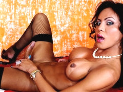 Lingerie Lover Luciana - Brazilian-Transsexuals