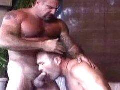 hot bears fuck