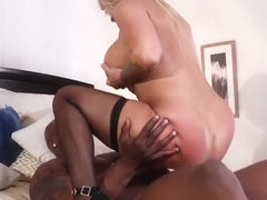 Alyssa Lynn Big Boobed Interracial