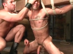 Gay BDSM porno video